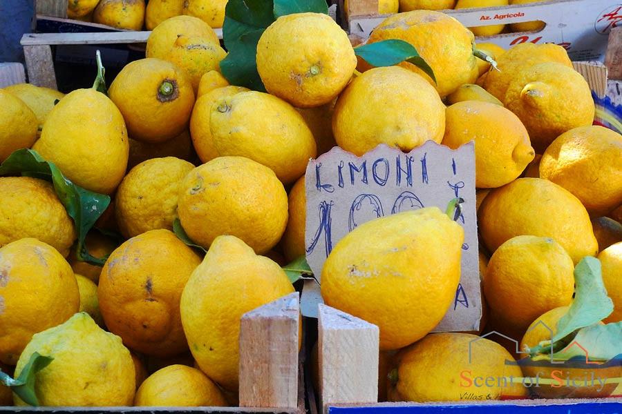 Tipical Sicilian Lemons