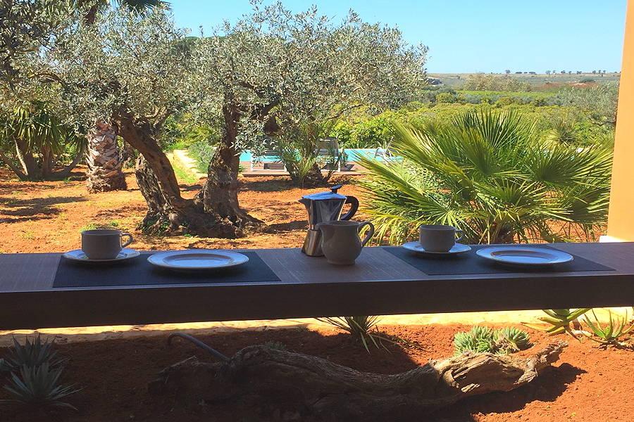 castelvetrano Sicily Villa Olive Trees