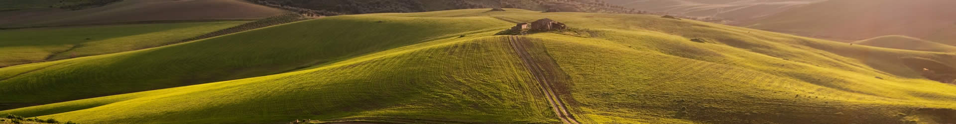 villa in sicilian countryside