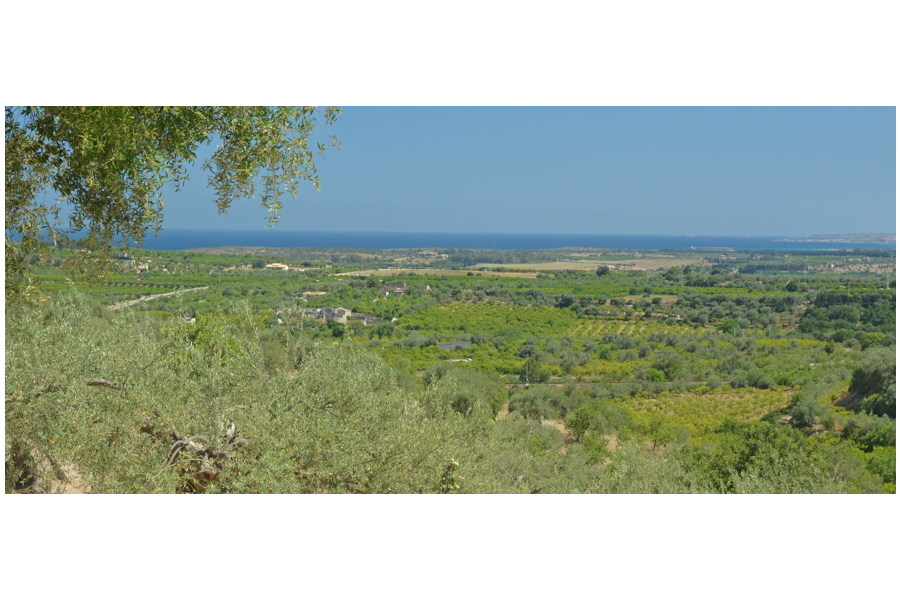 Villa Lemon Tree, Noto are, Sicily, the view