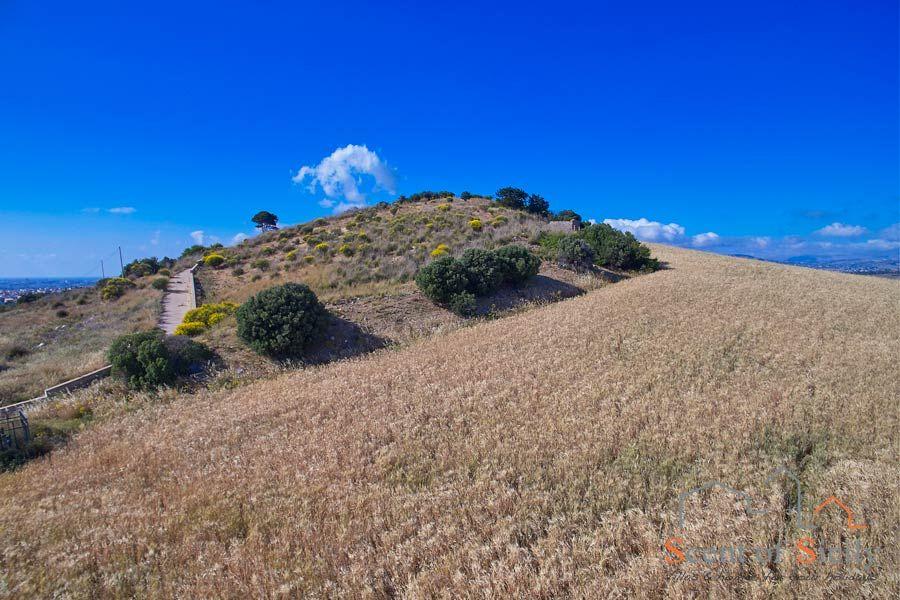 Trapani area, Sicily, the countryside