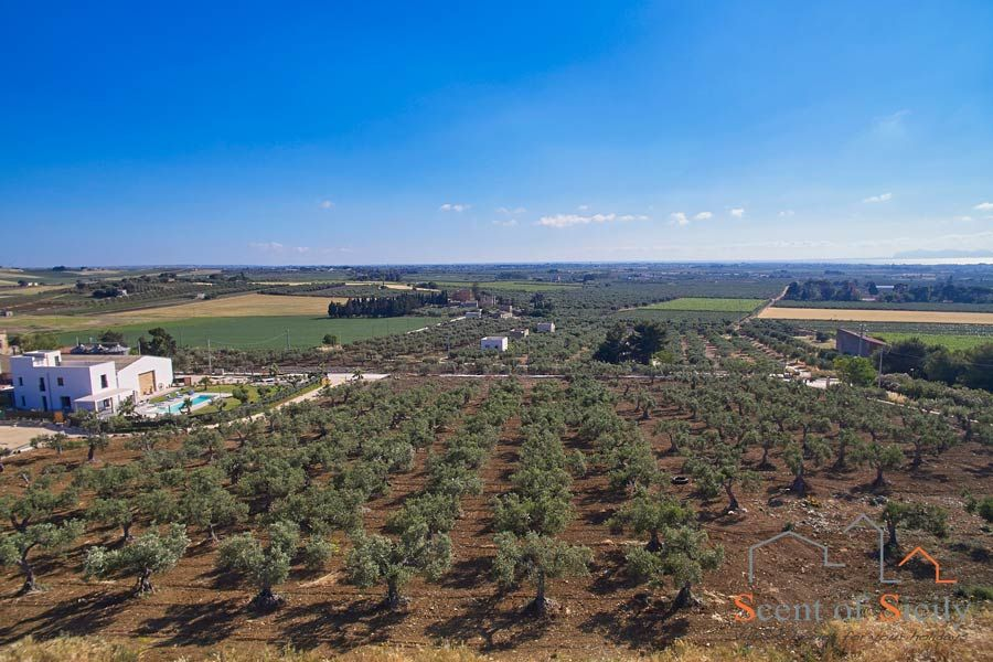Paceco, Trapani area, Sicily, the countryside
