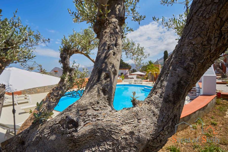 Villa Amphora pool area, Carini, Sicily