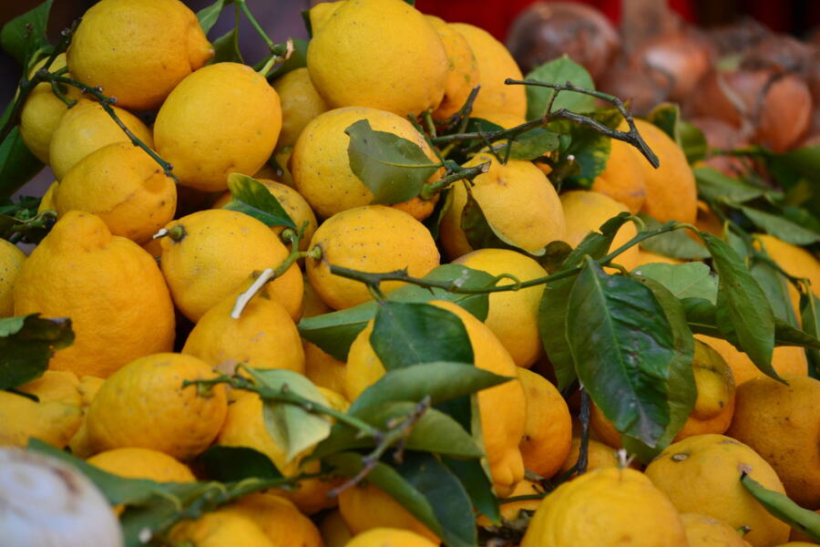 Sicilian tasty and fresh lemons