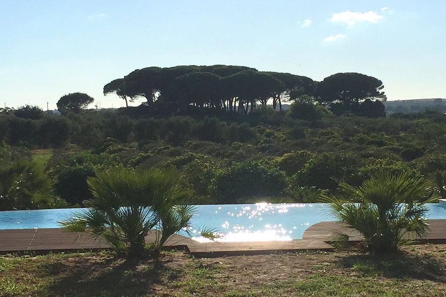 Villa Olive Trees, Castelvetrano Western Siicly
