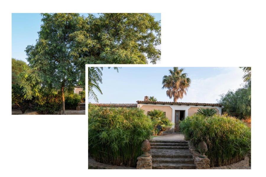 Welcome to Villa Bouganville Castelvetrano Scent of Sicily