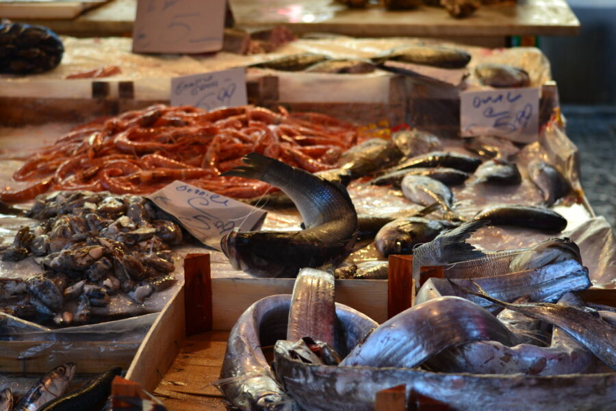 Open fish market