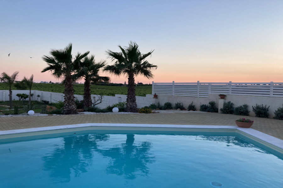 Palm trees embraced by the colours of the sunset reflected in the waters of the pool